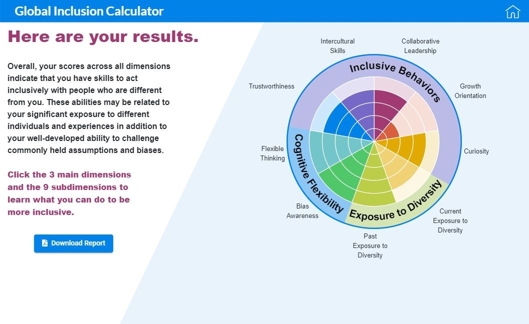 Screenshot of Global Inclusion Calculator